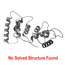 Protein Structure Not Found.